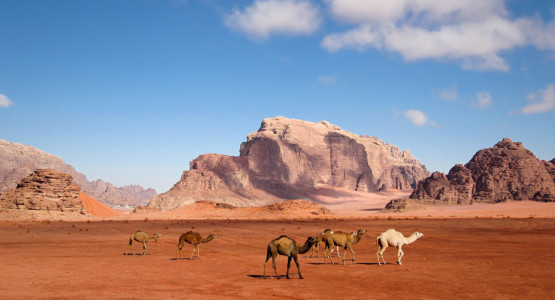 Jordan Nature & Culture